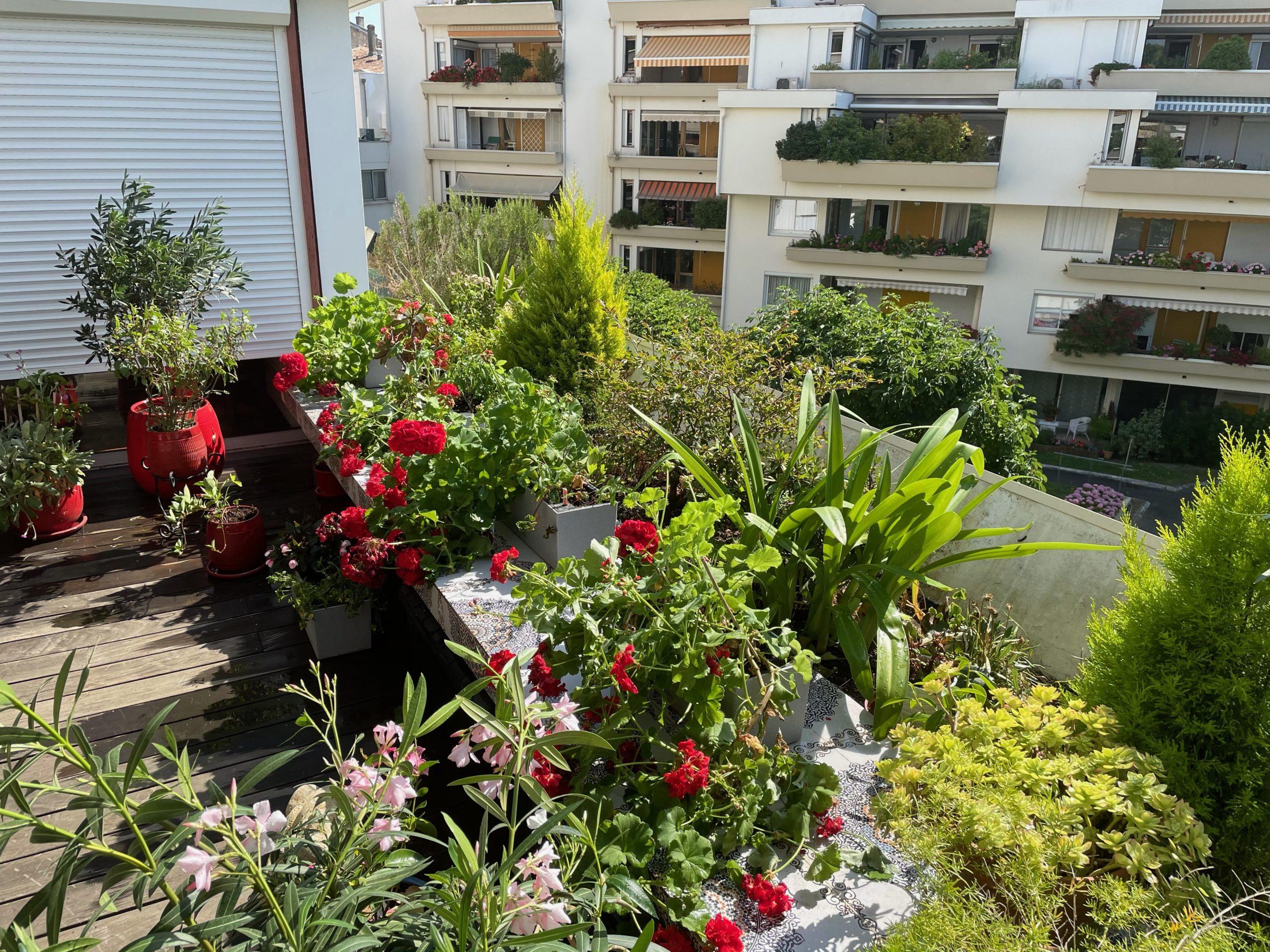 Les Jardins D&453.jpeg039;Arcadie Image01 453