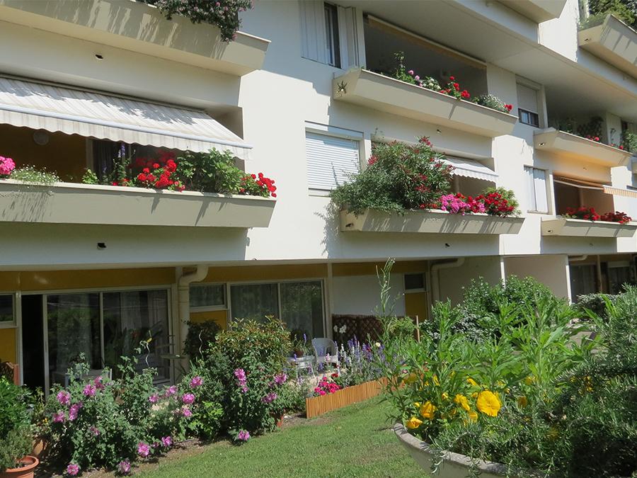 Les Jardins D&521.jpg039;Arcadie LES JARDINS D'ARCADIE Résidence Senior SérényS à Bordeaux (3) 521